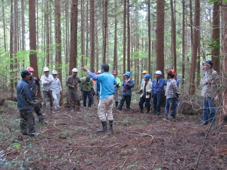 「森と遊ぼう」プロジェクト(コカコーラ) 003